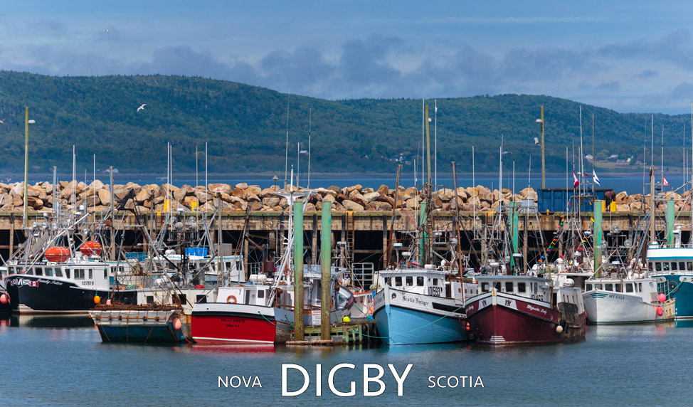 Digby Harbour - Nova Scotia