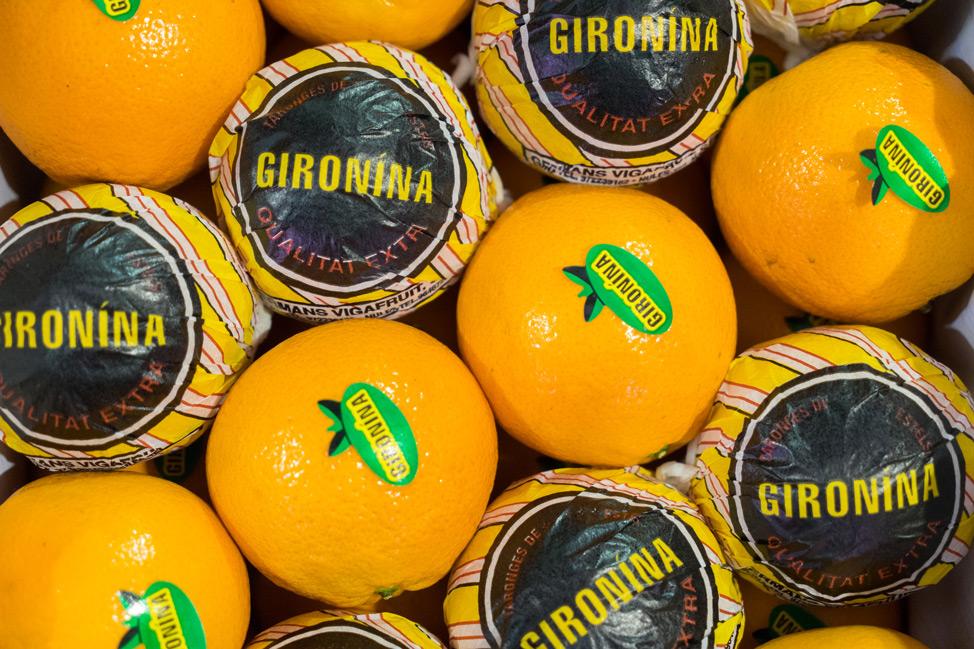 Girona Gironina