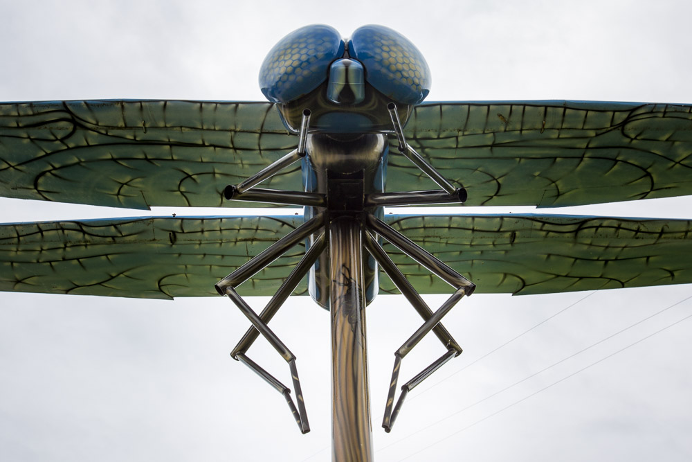 World-Largest-Dragonfly-Wabamun