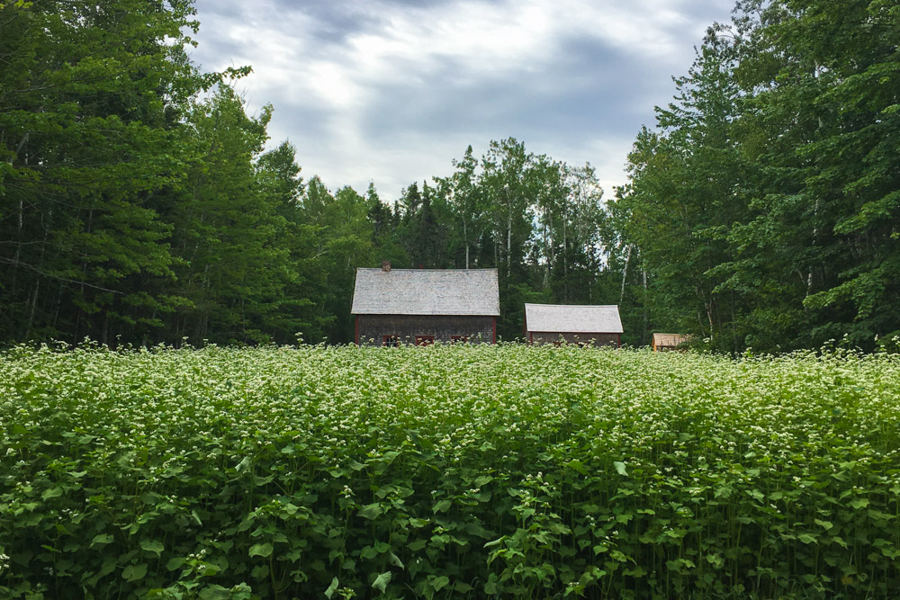 Madame Savoie Home Acadian Village