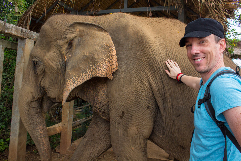 Chiang-Mai-Thailand-Elephants-Pete