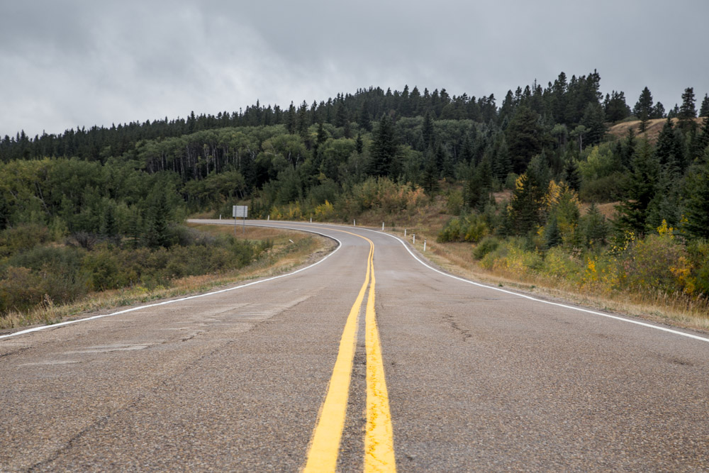 Cypress-Hills-Provincial-Park-Drive