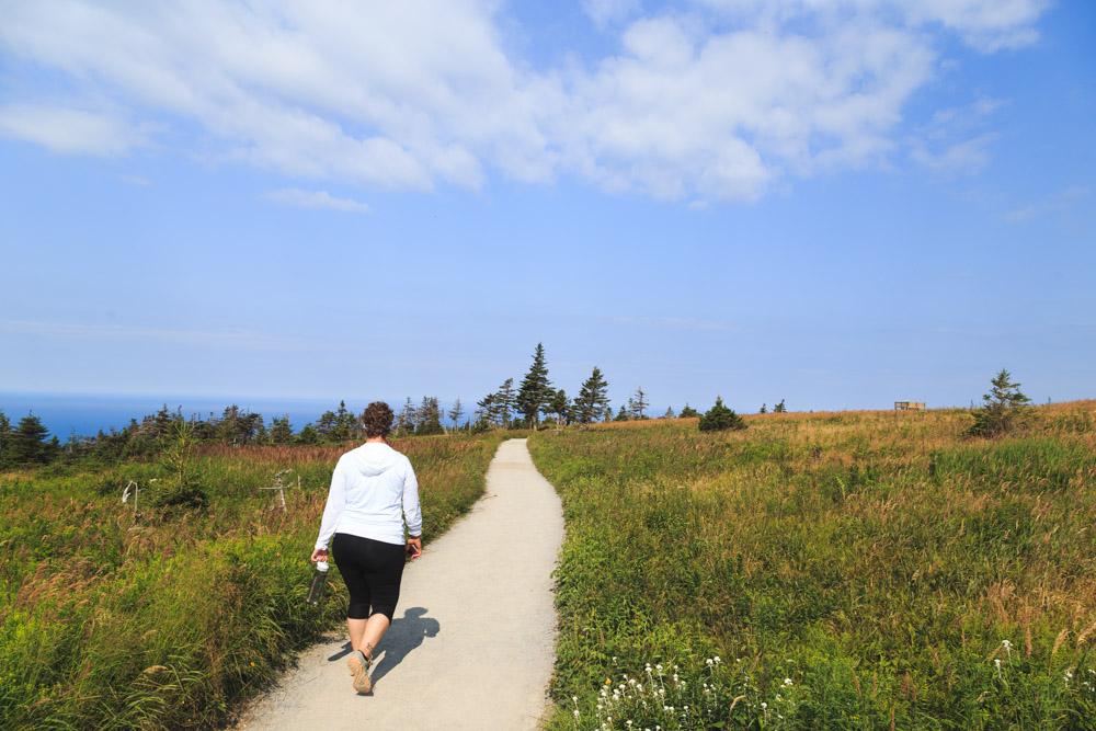 Skyline Trail Path