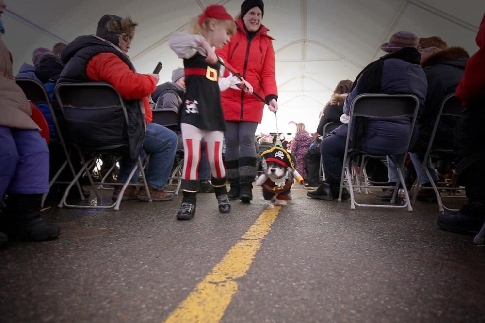 Dog-Parade-1