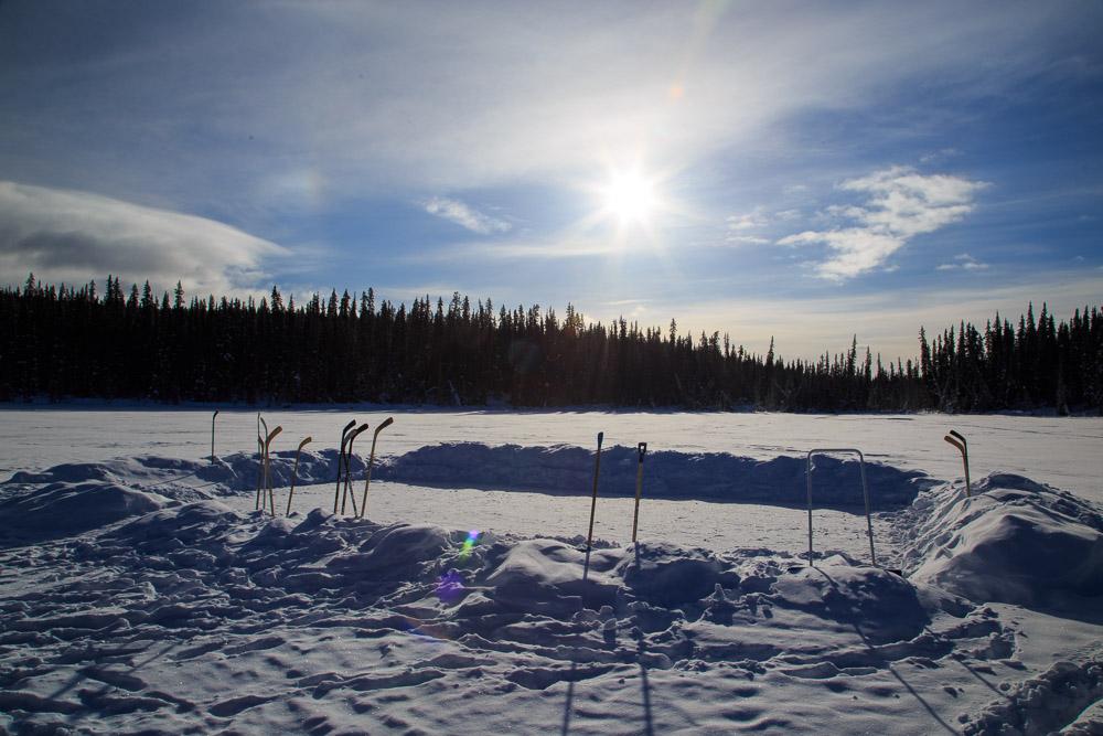 Ice Rink Yukon