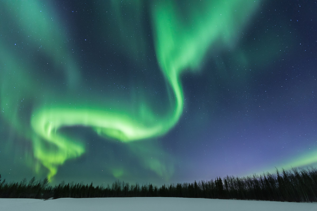Northern Lights Tour Fort McMurray Alberta 1
