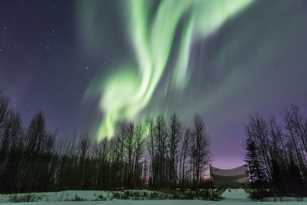 Northern Lights Tour Fort McMurray Alberta 2