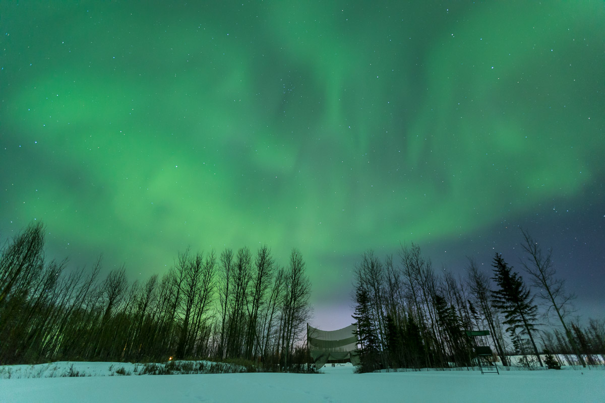 Northern Lights Tour Fort McMurray Alberta 4