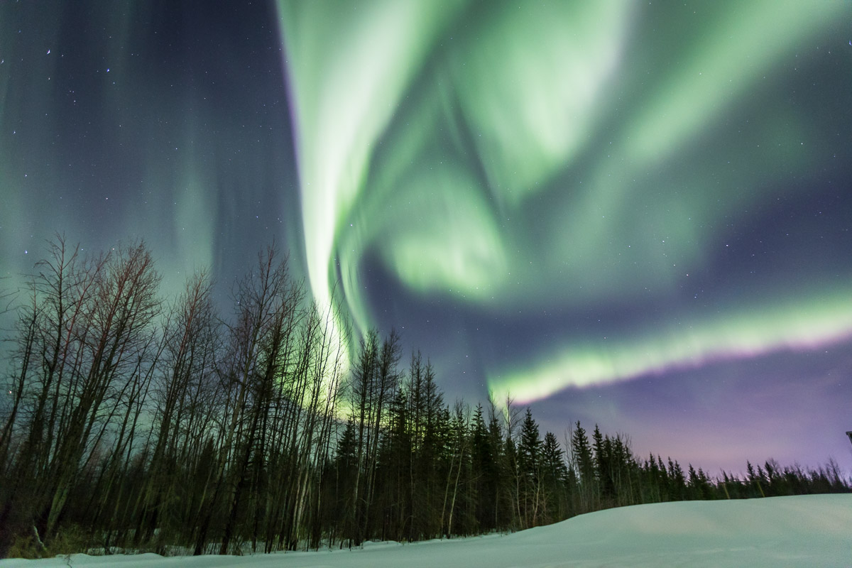 Northern Lights Tour Fort McMurray Alberta 6