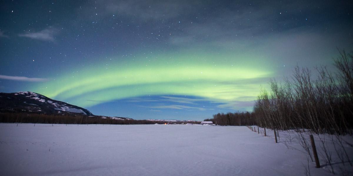 Northern Lights Yukon Canada Field