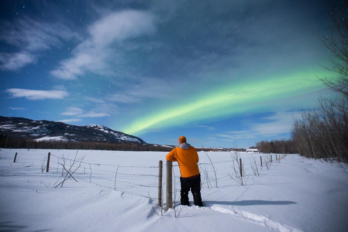 Northern Lights Yukon Canada Pete