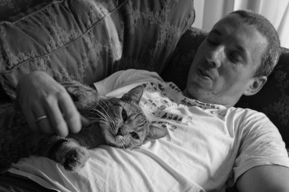 Pete Cat Sitting