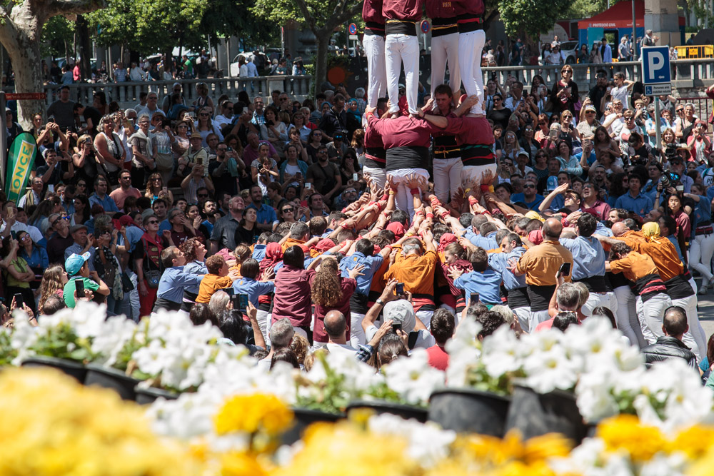 Human Towers Girona Flower Festival Team Help