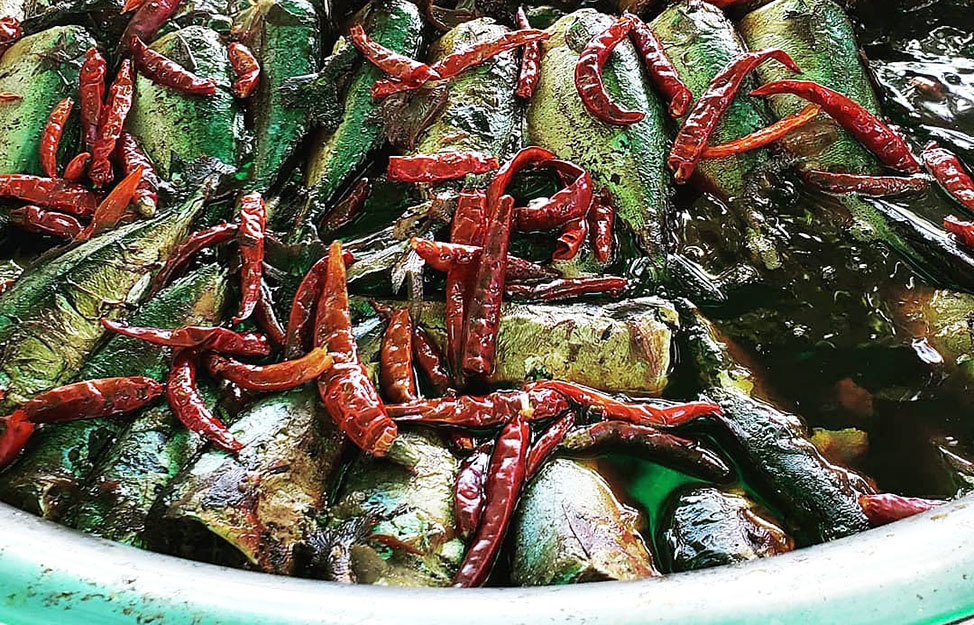 chili anchovies