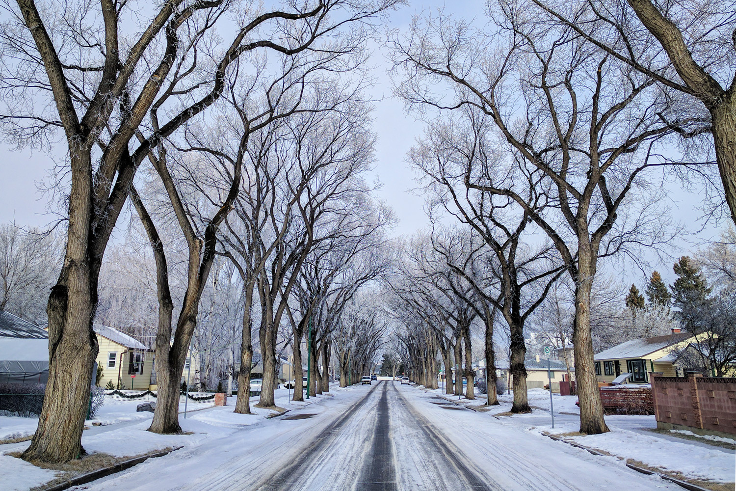 Cold-Winter-Day-in-Lethbridge