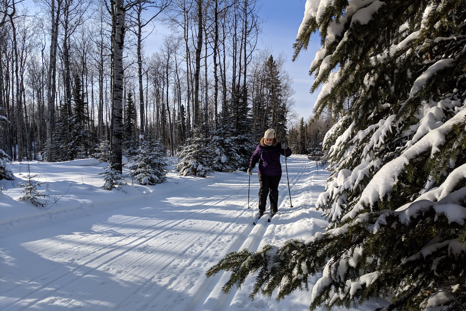 Cross Country Skiing Dalene