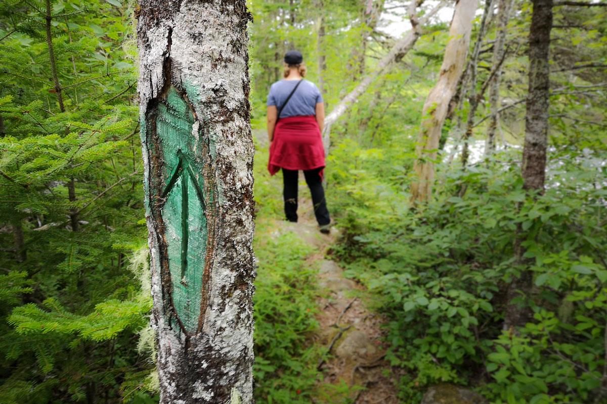 Liscombe Falls eastern shore Nova Scotia
