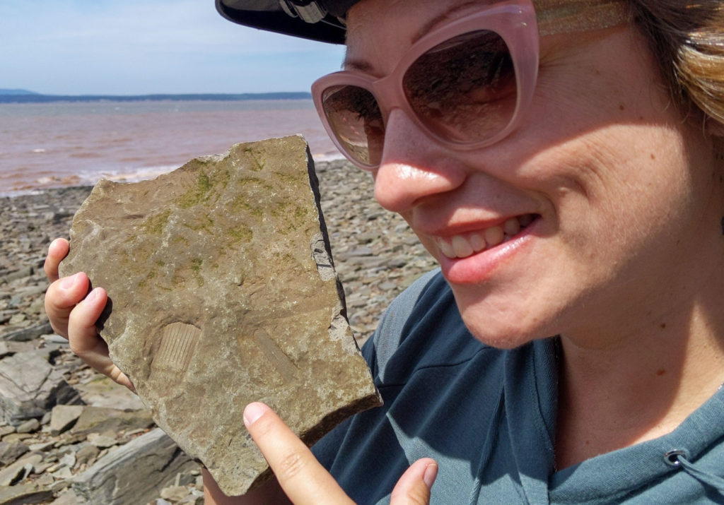 Finding fossils in Joggins, Nova Scotia